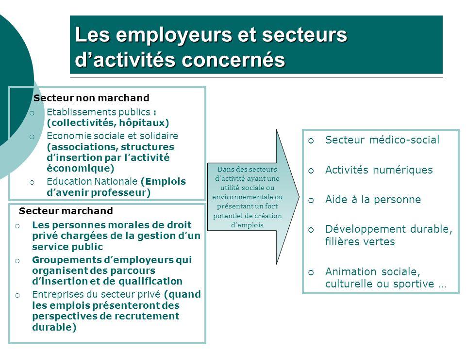 Les employeurs et secteurs dactivités concernés Secteur non marchand Etablissements publics : (collectivités, hôpitaux) Economie sociale et solidaire