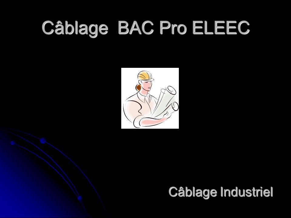 Câblage BAC Pro ELEEC Câblage Industriel