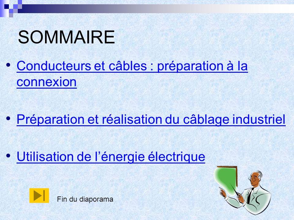 SOMMAIRE Conducteurs et câbles : préparation à la connexion Conducteurs et câbles : préparation à la connexion Préparation et réalisation du câblage industriel Utilisation de lénergie électrique Fin du diaporama