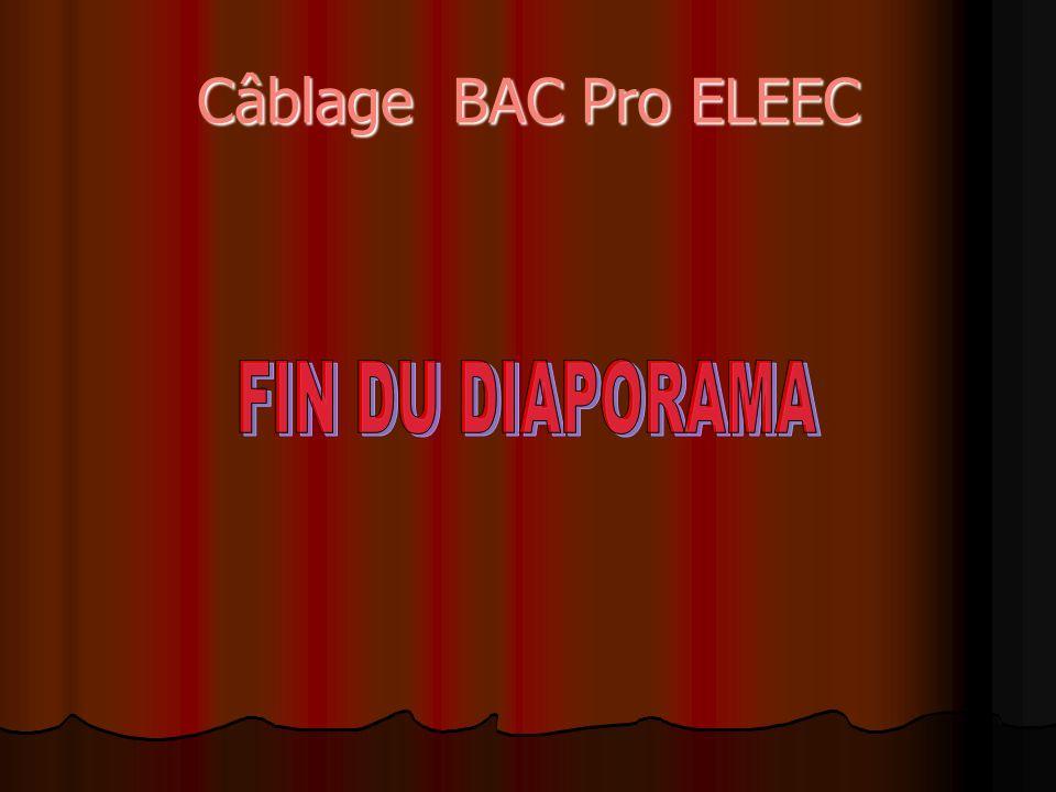 Câblage BAC Pro ELEEC