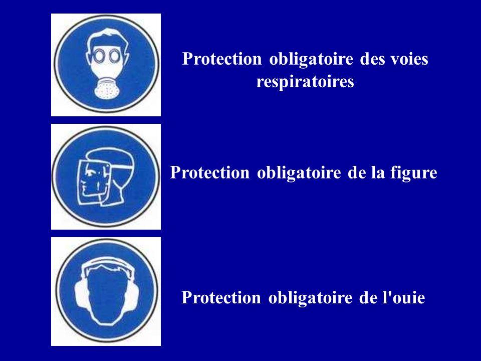 Protection obligatoire des voies respiratoires Protection obligatoire de l'ouie Protection obligatoire de la figure