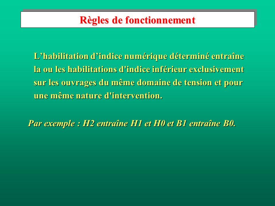 Règles de fonctionnement Lhabilitation dindice numérique déterminé entraîne la ou les habilitations d indice inférieur exclusivement sur les ouvrages du même domaine de tension et pour une même nature d intervention.