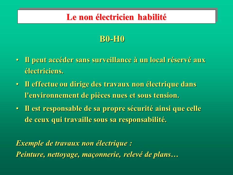Le non électricien habilité Il peut accéder sans surveillance à un local réservé aux électriciens.Il peut accéder sans surveillance à un local réservé aux électriciens.