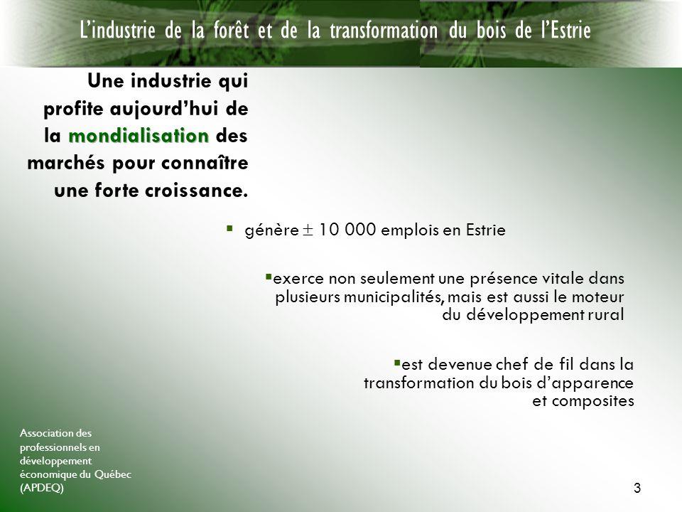 Association des professionnels en développement économique du Québec (APDEQ) 3 génère 10 000 emplois en Estrie Lindustrie de la forêt et de la transformation du bois de lEstrie est devenue chef de fil dans la transformation du bois dapparence et composites exerce non seulement une présence vitale dans plusieurs municipalités, mais est aussi le moteur du développement rural