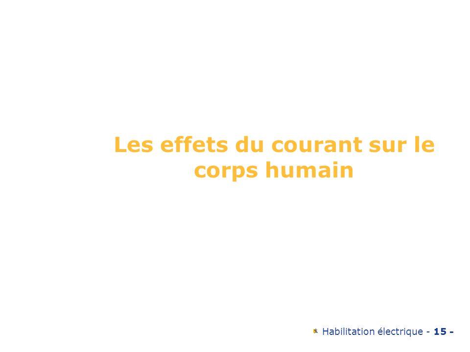Habilitation électrique - 15 - Les effets du courant sur le corps humain