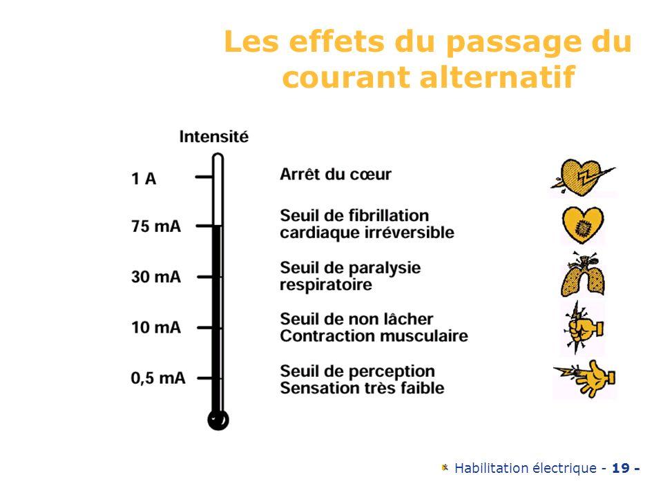 Habilitation électrique - 19 - Les effets du passage du courant alternatif