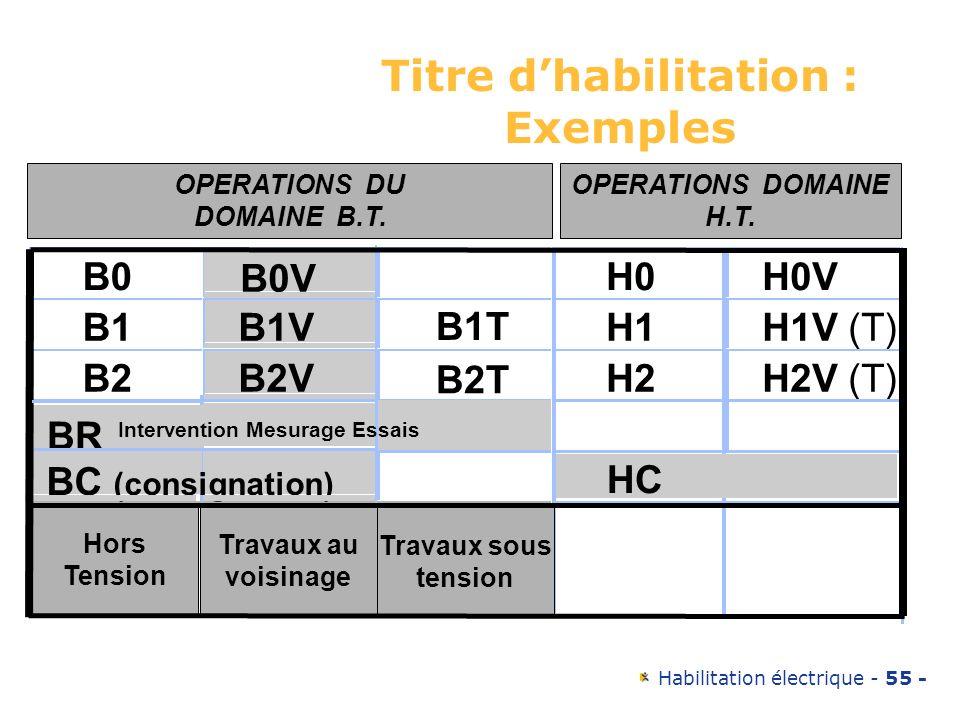Habilitation électrique - 55 - Titre dhabilitation : Exemples