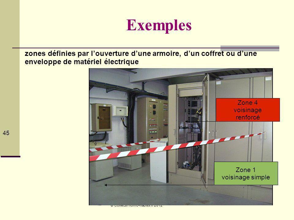 © Collectif homo-habilis.fr 2012 45 Exemples zones définies par louverture dune armoire, dun coffret ou dune enveloppe de matériel électrique Zone 1 voisinage simple Zone 4 voisinage renforcé