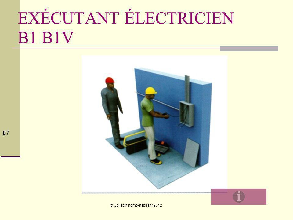 © Collectif homo-habilis.fr 2012 87 EXÉCUTANT ÉLECTRICIEN B1 B1V