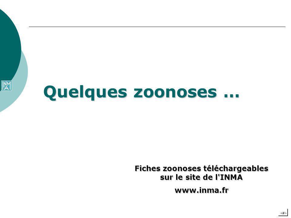 14 Quelques zoonoses … Fiches zoonoses téléchargeables sur le site de l'INMA www.inma.fr