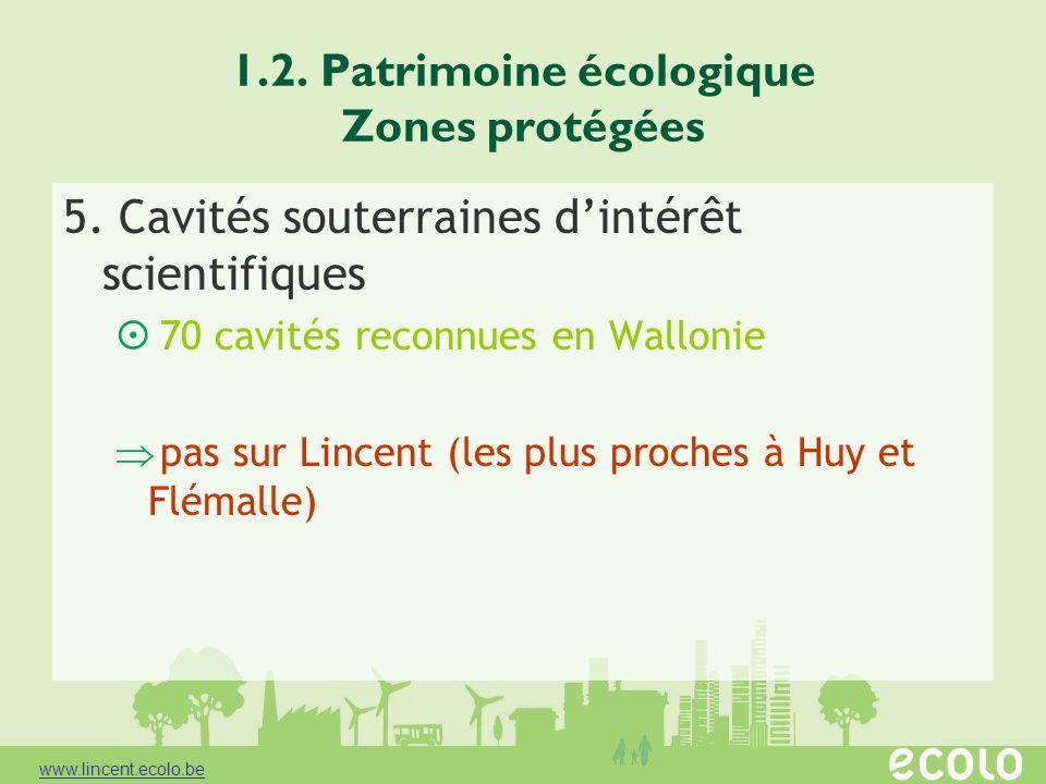 1.2. Patrimoine écologique Zones protégées 5. Cavités souterraines dintérêt scientifiques 70 cavités reconnues en Wallonie pas sur Lincent (les plus p