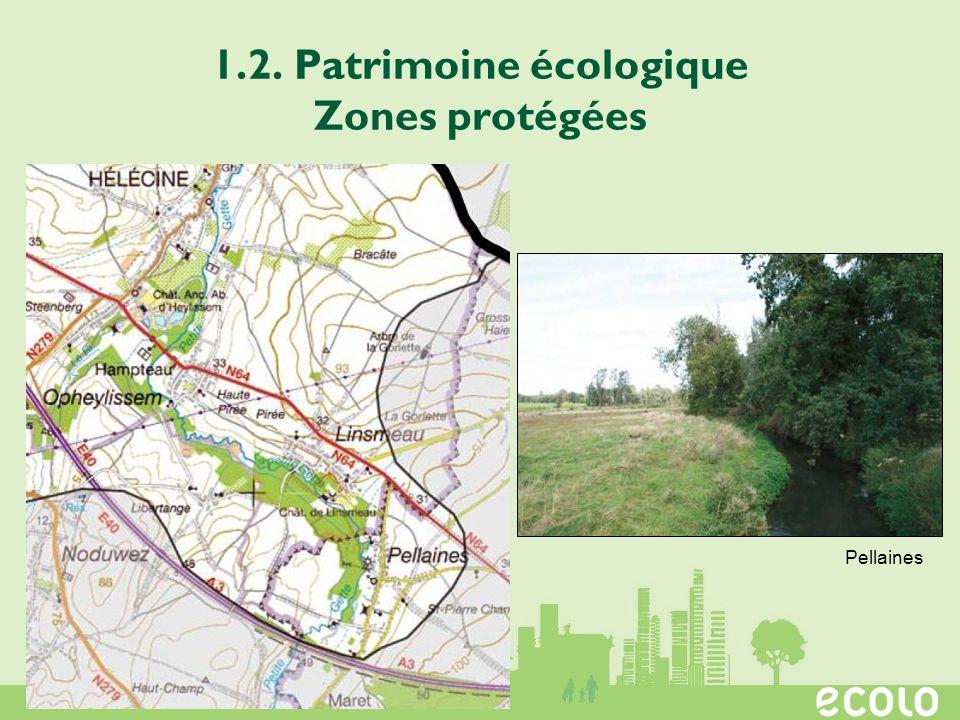 1.2. Patrimoine écologique Zones protégées Pellaines