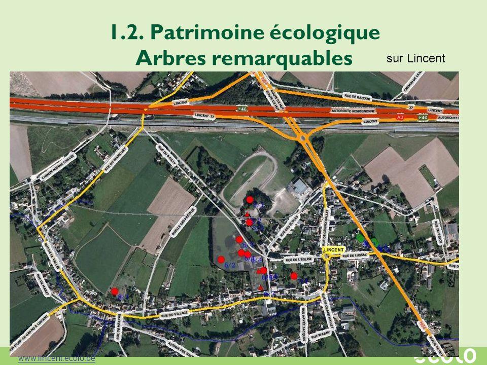 1.2. Patrimoine écologique Arbres remarquables sur Lincent www.lincent.ecolo.be
