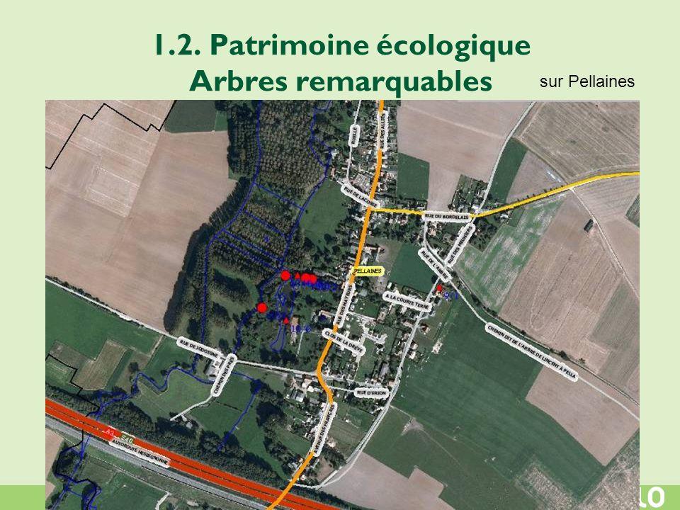 1.2. Patrimoine écologique Arbres remarquables sur Pellaines