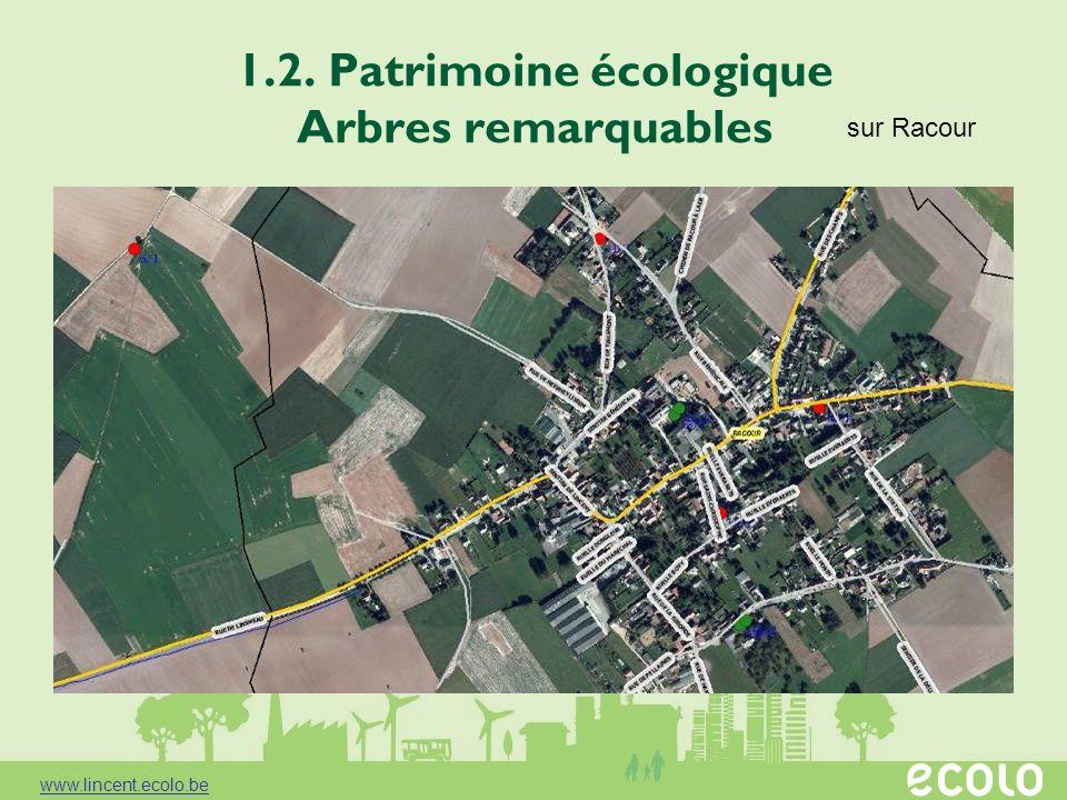 1.2. Patrimoine écologique Arbres remarquables sur Racour www.lincent.ecolo.be