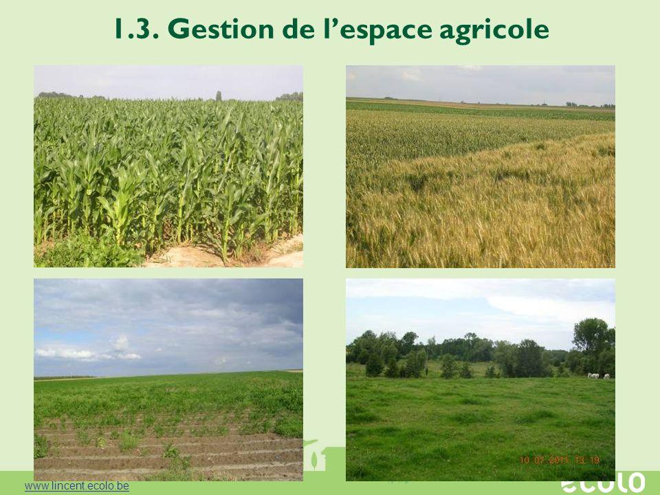 1.3. Gestion de lespace agricole www.lincent.ecolo.be