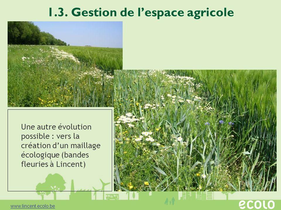 1.3. Gestion de lespace agricole Une autre évolution possible : vers la création dun maillage écologique (bandes fleuries à Lincent) www.lincent.ecolo
