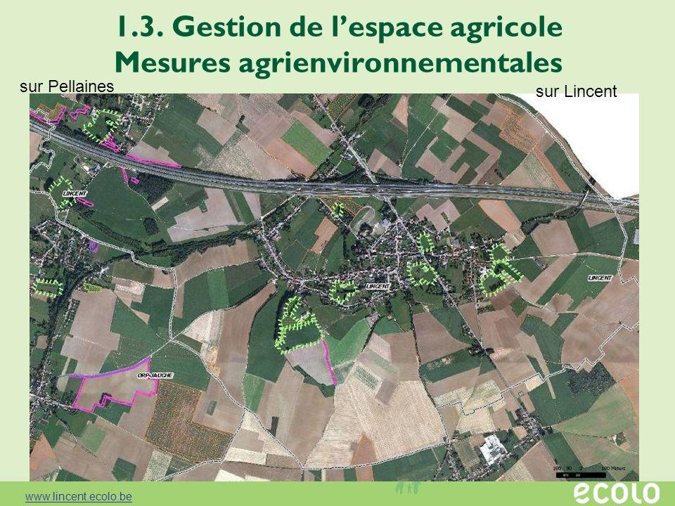 1.3. Gestion de lespace agricole Mesures agrienvironnementales sur Lincent sur Pellaines www.lincent.ecolo.be