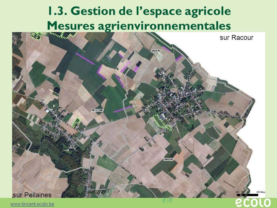 1.3. Gestion de lespace agricole Mesures agrienvironnementales sur Racour sur Pellaines www.lincent.ecolo.be