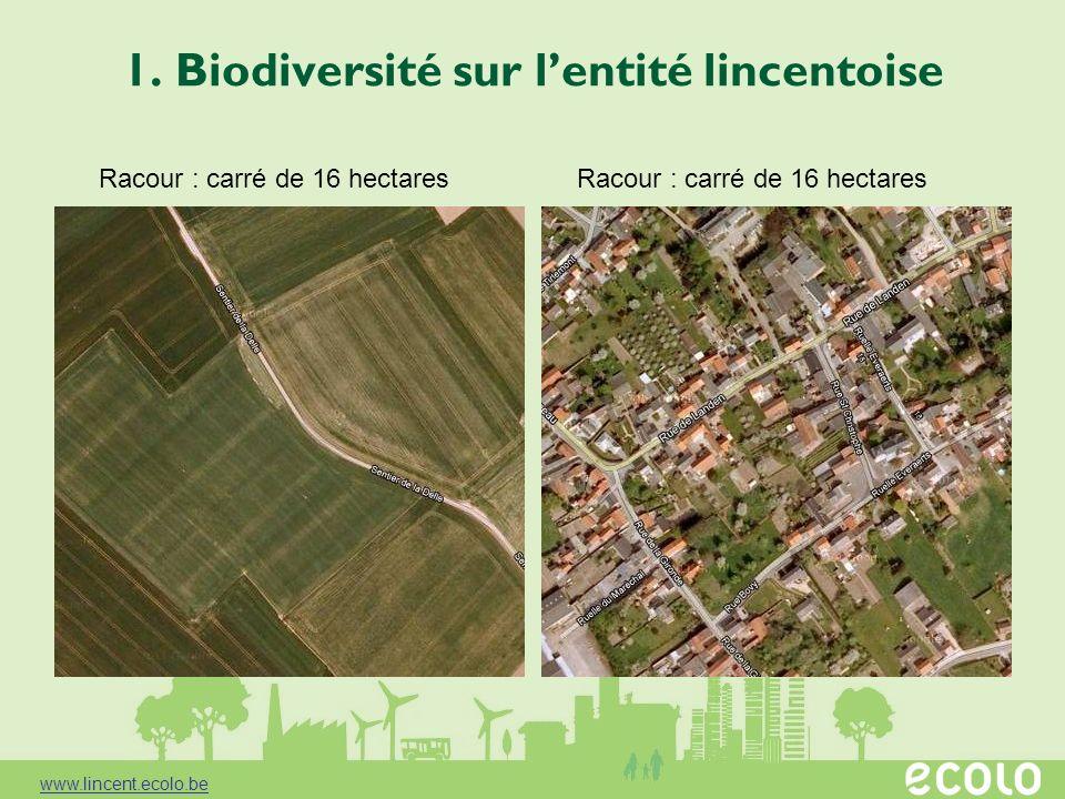 1. Biodiversité sur lentité lincentoise Racour : carré de 16 hectares www.lincent.ecolo.be