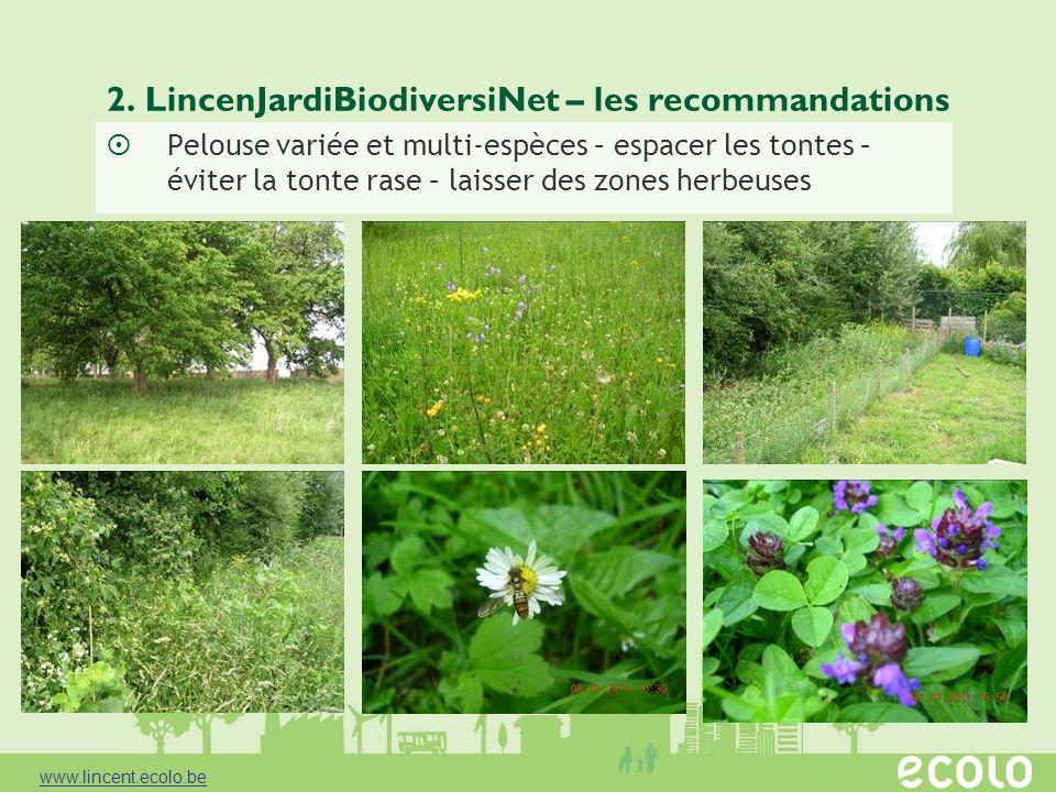 2. LincenJardiBiodiversiNet – les recommandations Pelouse variée et multi-espèces – espacer les tontes – éviter la tonte rase – laisser des zones herb