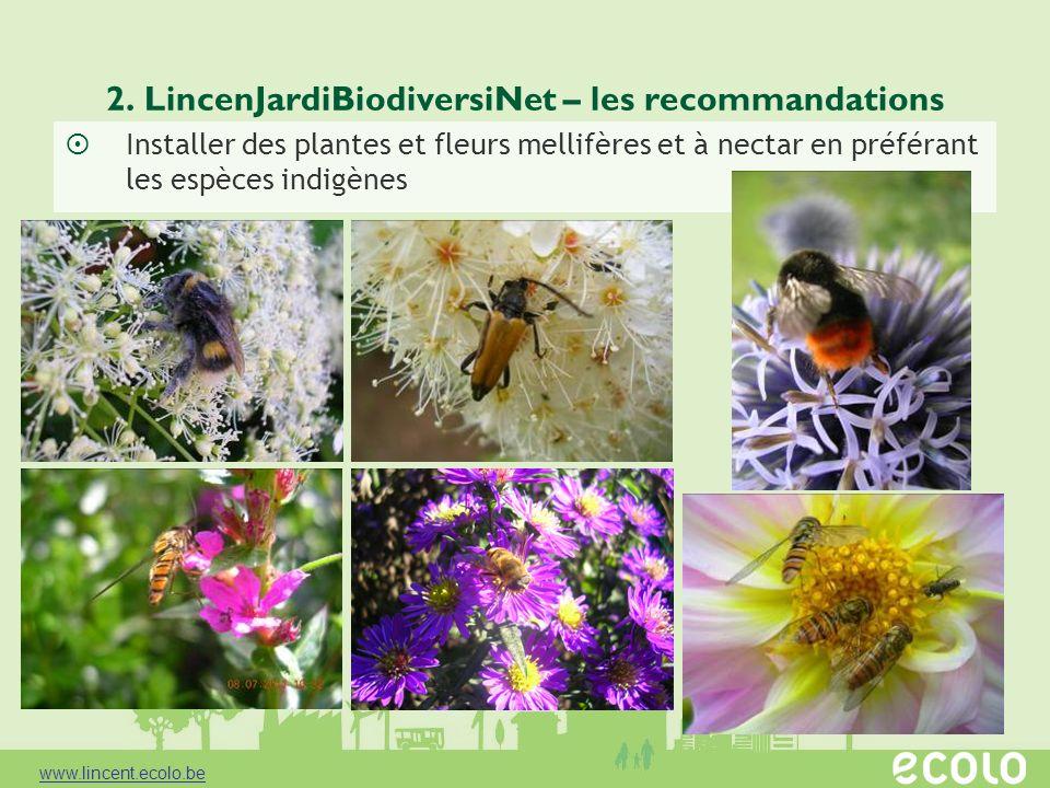 2. LincenJardiBiodiversiNet – les recommandations Installer des plantes et fleurs mellifères et à nectar en préférant les espèces indigènes www.lincen