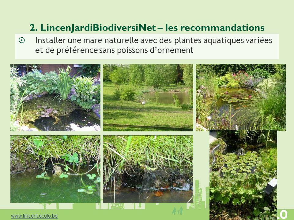 2. LincenJardiBiodiversiNet – les recommandations Installer une mare naturelle avec des plantes aquatiques variées et de préférence sans poissons dorn