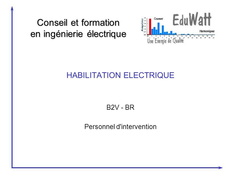 Conseil et formation en ingénierie électrique HABILITATION ELECTRIQUE B2V - BR Personnel d intervention
