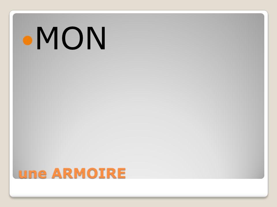 une ARMOIRE MON