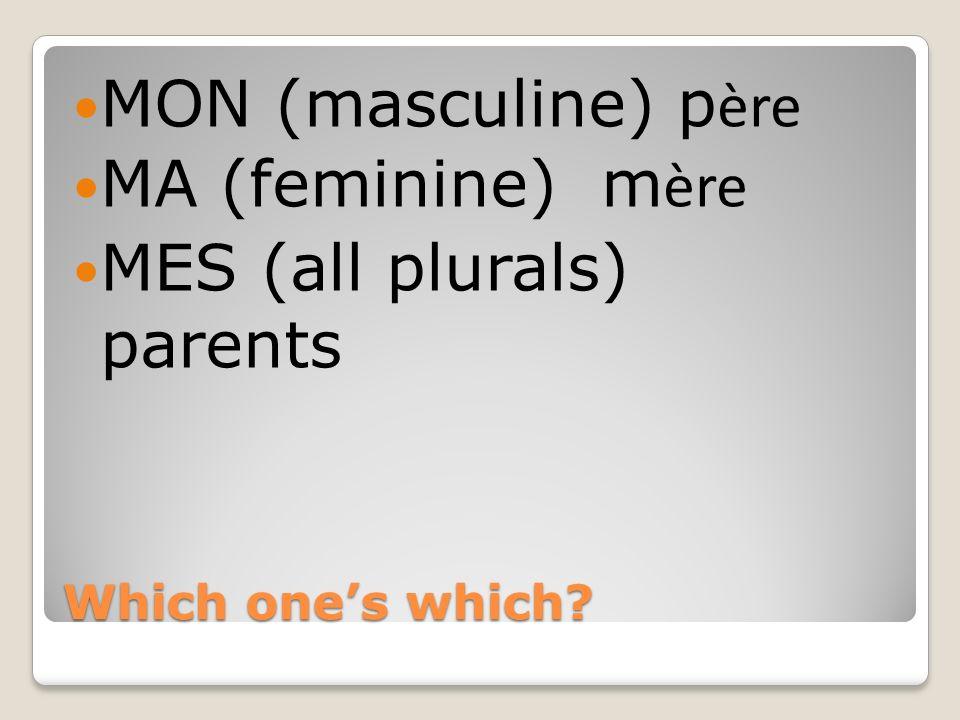 Which ones which? MON (masculine) p ère MA (feminine) m ère MES (all plurals) parents