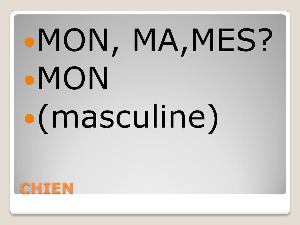 CHIEN MON, MA,MES? MON (masculine)