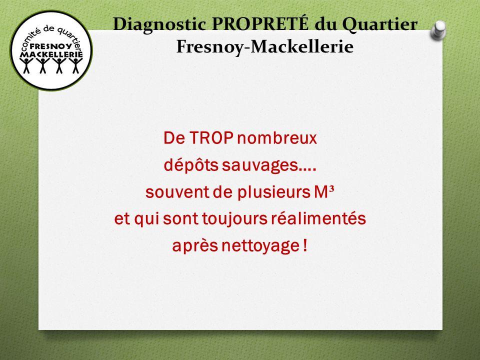 Diagnostic PROPRETÉ du Quartier Fresnoy-Mackellerie Rue de MOUVAUX