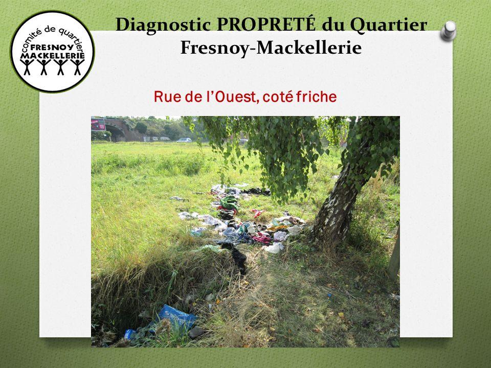 Diagnostic PROPRETÉ du Quartier Fresnoy-Mackellerie Rue de lOuest, coté friche