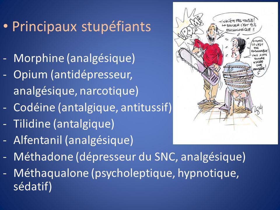 Principaux stupéfiants -Morphine (analgésique) -Opium (antidépresseur, analgésique, narcotique) -Codéine (antalgique, antitussif) -Tilidine (antalgiqu
