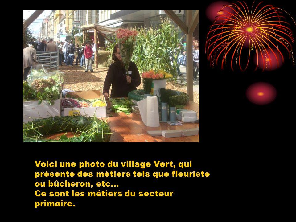 Voici une photo du village Vert, qui présente des métiers tels que fleuriste ou bûcheron, etc... Ce sont les métiers du secteur primaire.