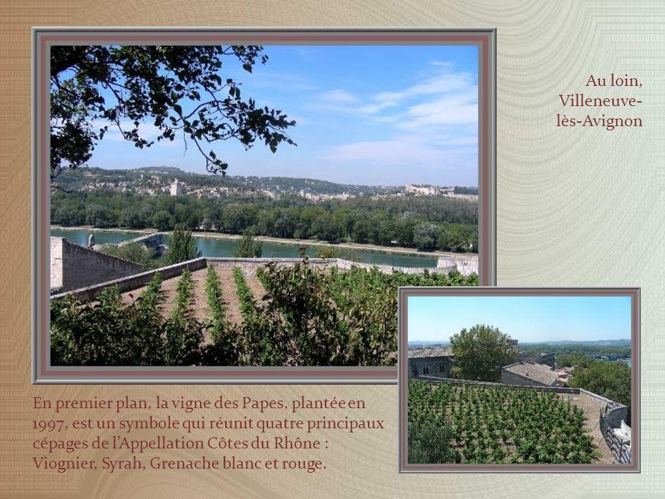 Quittant la basilique, nous nous dirigeons vers le joli jardin aux multiples essences, aménagé depuis 1831 au-dessus du rocher.