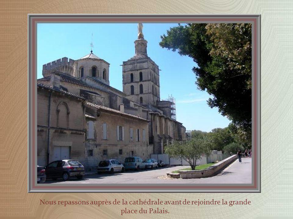 En arrière de la cathédrale, le meilleur endroit pour admirer les vieux toits dAvignon…