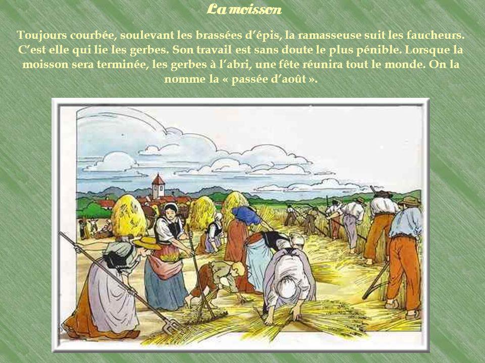 Homme dun terroir, dun « pays », le « paysan » fait aussi partie dun groupe, dune communauté. Le village rassemble tout le monde en une sorte de grand