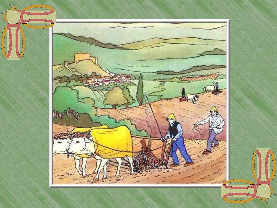 Le travail des champs Le cultivateur utilise une charrue dont seul le soc est en fer et qui est tout-à-fait semblable à celle quutilisaient ses ancêtr