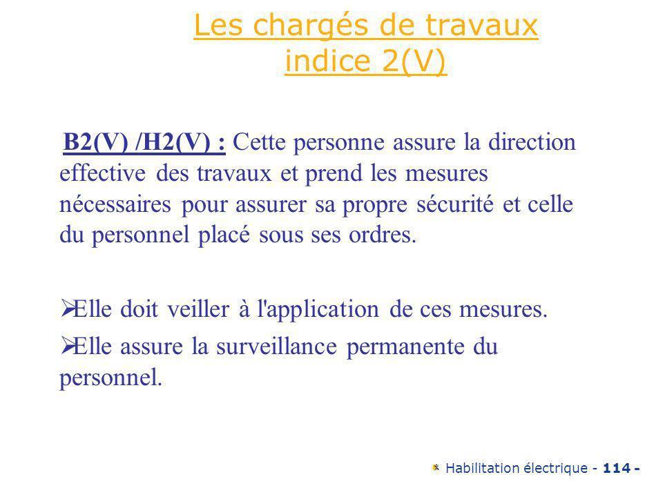 Habilitation électrique - 114 - Les chargés de travaux indice 2(V) B2(V) /H2(V) : Cette personne assure la direction effective des travaux et prend le
