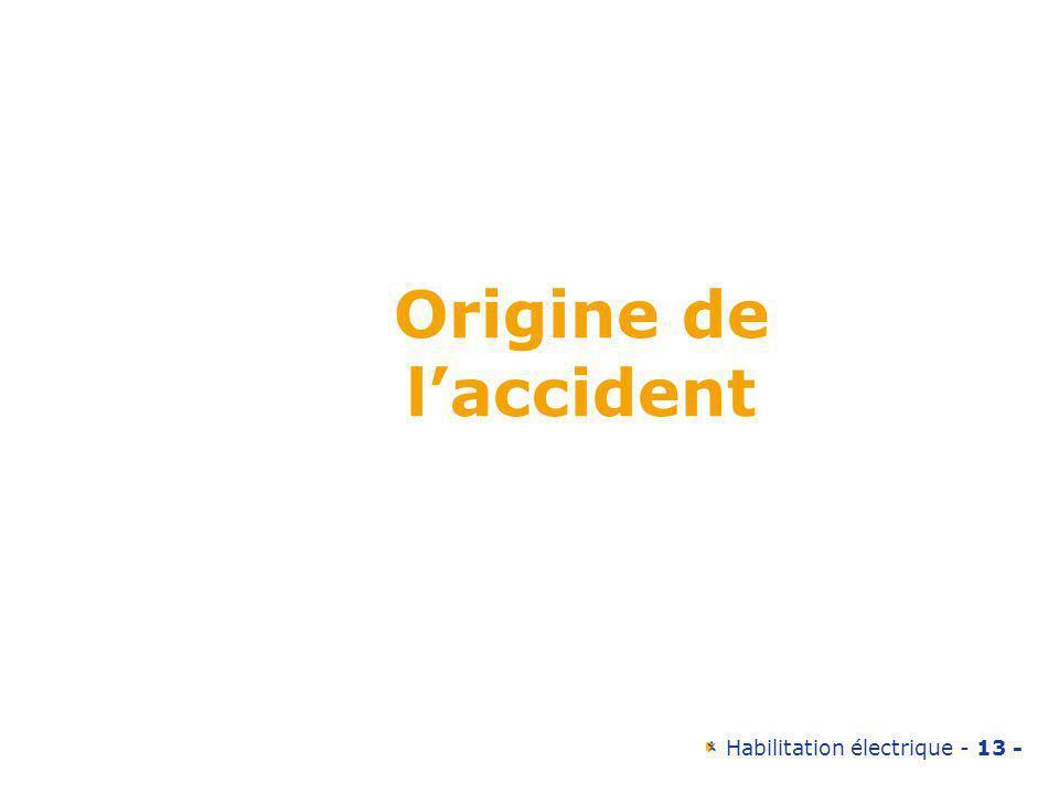 Habilitation électrique - 13 - Origine de laccident