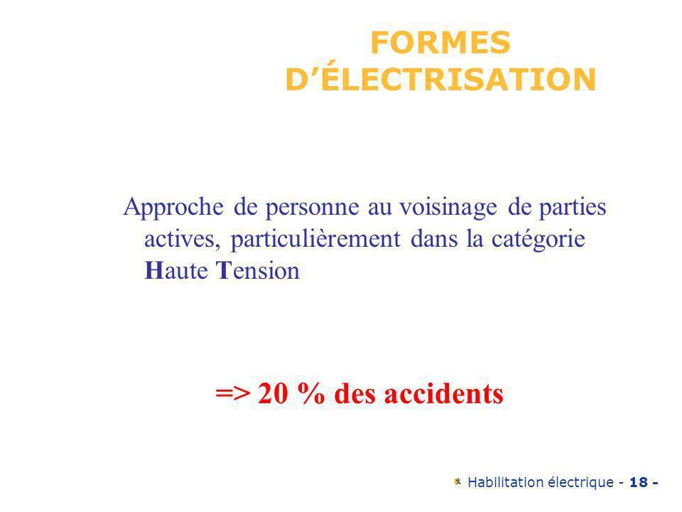 Habilitation électrique - 18 - Approche de personne au voisinage de parties actives, particulièrement dans la catégorie Haute Tension => 20 % des acci