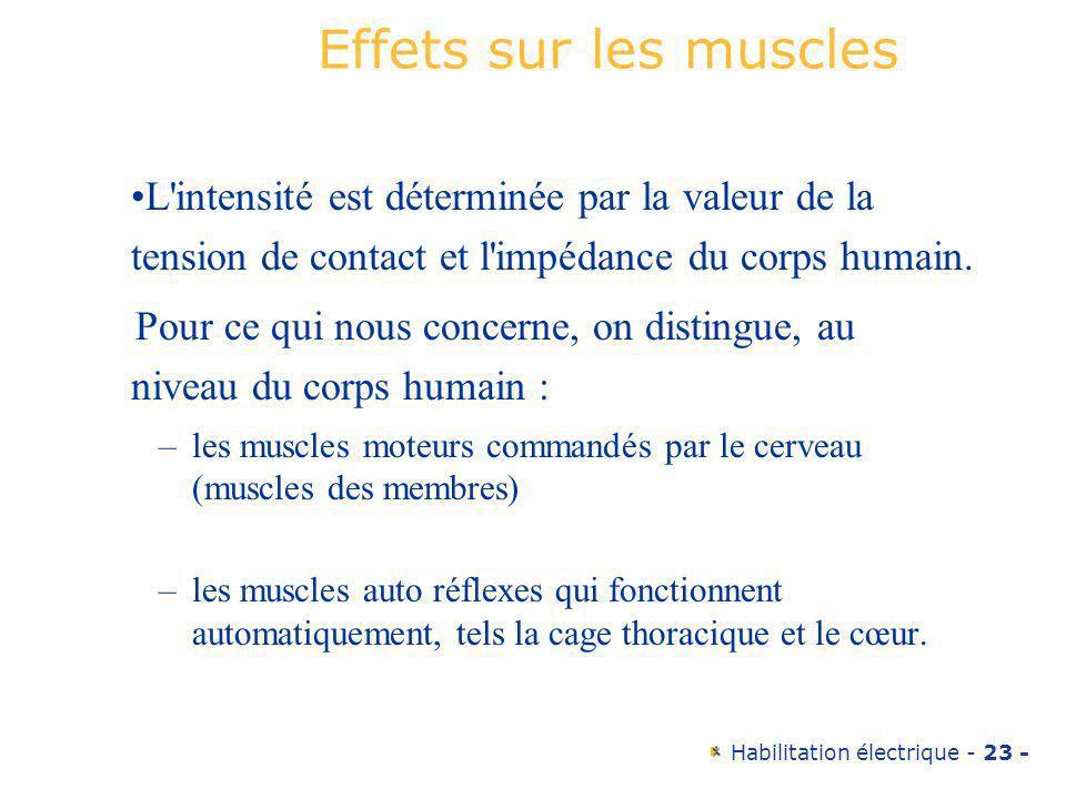 Habilitation électrique - 23 - Effets sur les muscles L'intensité est déterminée par la valeur de la tension de contact et l'impédance du corps humain