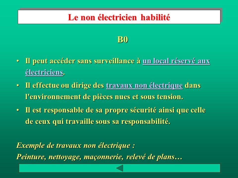 Rôle de l exécutant électricien Il doit: Suivre les instructions du chargé de travaux.Suivre les instructions du chargé de travaux.