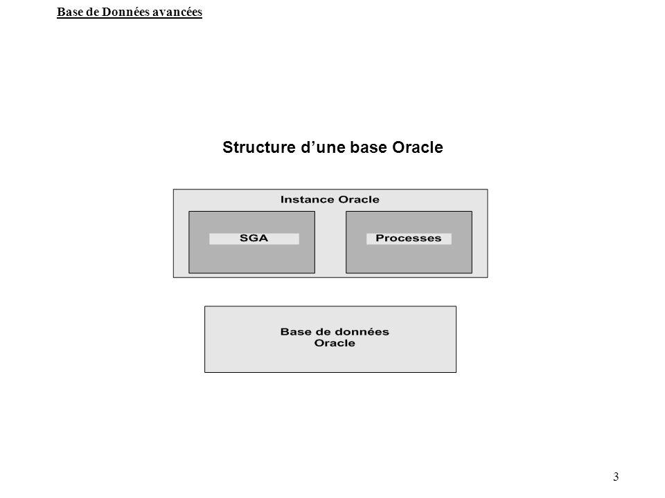 4 Base de Données avancées Définitions Base de Données(database) Ensemble de fichiers de données (data files), des fichiers de contrôle(control files) et des fichiers journaux de transactions (redo logs), formant la structure permanente d un serveur oracle.