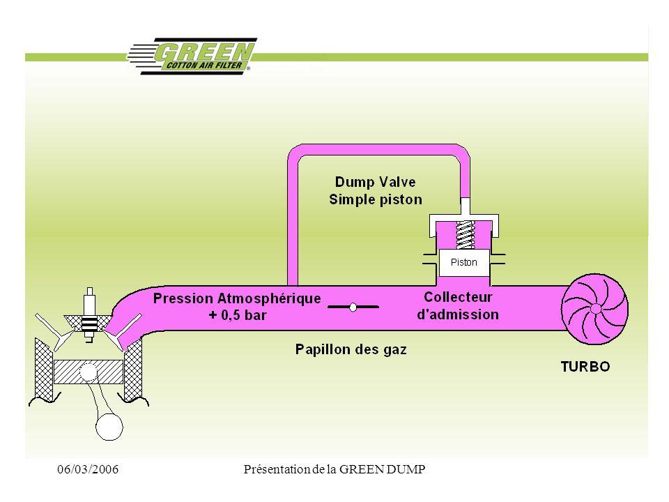 06/03/2006Présentation de la GREEN DUMP La GREEN DUMP Electronique présentation Le produit de base reste la GREEN DUMP en finition ALUMINIUM POLI DIAMANT –fournie dans une boite individuelle – accompagnée de sa notice de montage La gestion electronique est fournie complète.