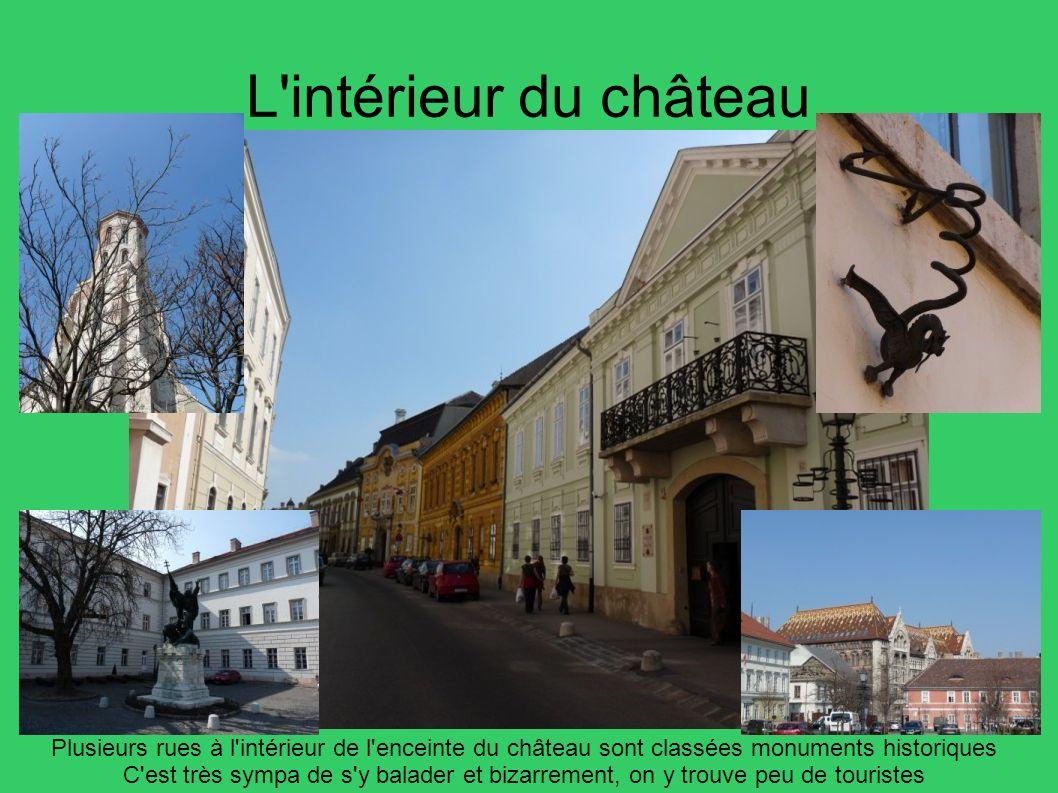 L'intérieur du château Plusieurs rues à l'intérieur de l'enceinte du château sont classées monuments historiques C'est très sympa de s'y balader et bi