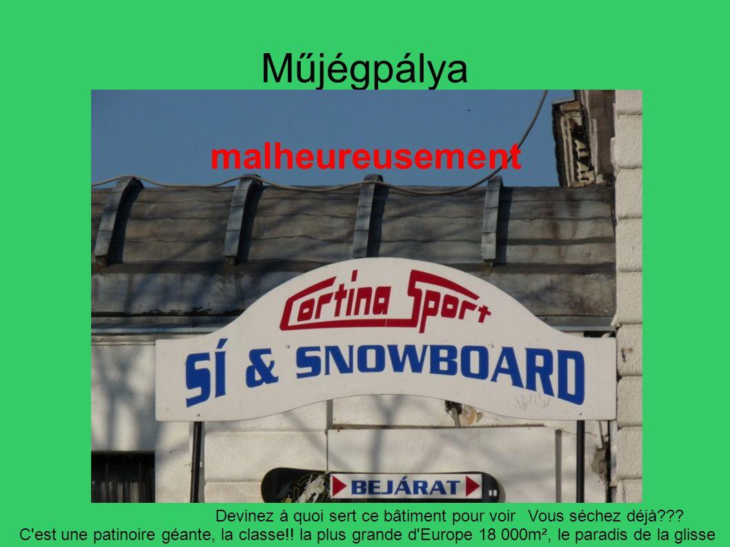 Műjégpálya Devinez à quoi sert ce bâtiment pour voirVous séchez déjà??? C'est une patinoire géante, la classe!! la plus grande d'Europe 18 000m², le p