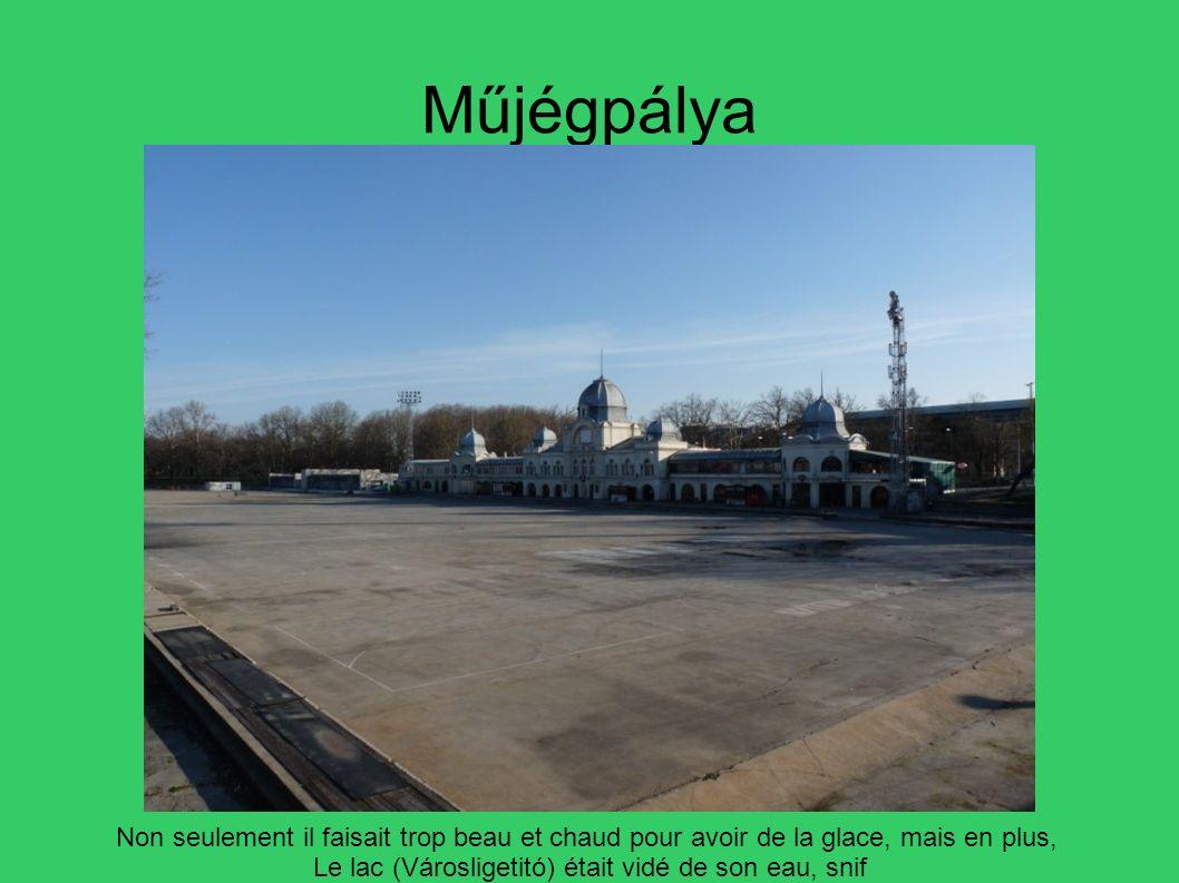 Műjégpálya Non seulement il faisait trop beau et chaud pour avoir de la glace, mais en plus, Le lac (Városligetitó) était vidé de son eau, snif