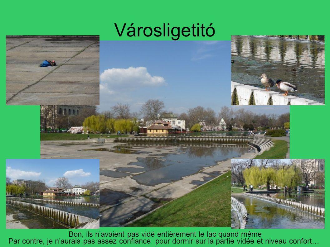 Városligetitó Bon, ils navaient pas vidé entièrement le lac quand même Par contre, je naurais pas assez confiance pour dormir sur la partie vidée et n